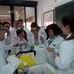 1º bachillerato. laboratorio (2)