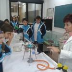 Cristalización de sales. Tercer Ciclo (13)