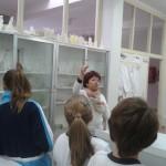 Cristalización de sales. Tercer Ciclo (2)