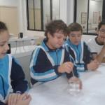 Cristalización de sales. Tercer Ciclo (6)