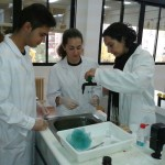 PRÁCTICA BIOLOGÍA POLLO (3)