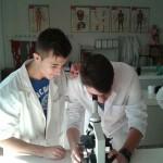 Práctica de la célula (4)