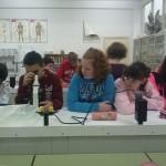 Laboratorio 1º ESO B (3)