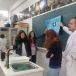 Material del  laboratorio (3)
