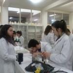 Reconocimiento de sustancias ácidas (2)