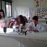 Laboratorio Biologia 1º Bach
