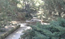 Jardín Botánico (2)