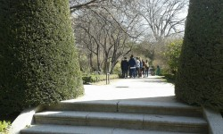 Jardín Botánico (7)