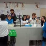 Laboratorio 3º primaria (2)