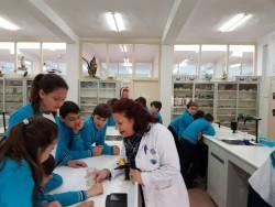 Laboratorio 5º (10)