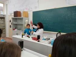 Laboratorio 5º (4)