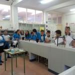 Laboratorio 6º (3)