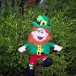 St. Patrick 001 (4)