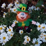 St. Patrick 001 (6)