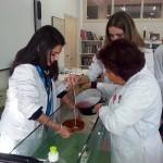 Velas.Laboratorio (3)