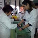Velas.Laboratorio (6)