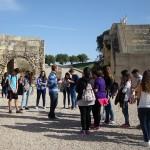 Visita a Segóbriga (5)