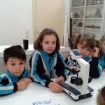 Laboratorio 1º primaria