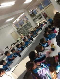 laboratorio-1o-prim-1