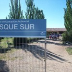 Bosquesur (1)