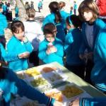 Dia de Fruta 13-11-15