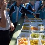 Dia de Fruta 13-11-15 (3)