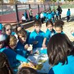 Dia de Fruta 13-11-15 (6)