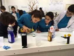 Laboratorio Carmen 1ºESO (6)