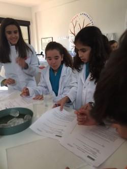 Laboratorio Julia 1ºESO (1)