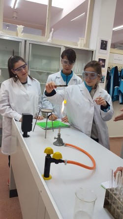 laboratorio 4º ESO (5)
